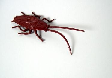 plastic bug